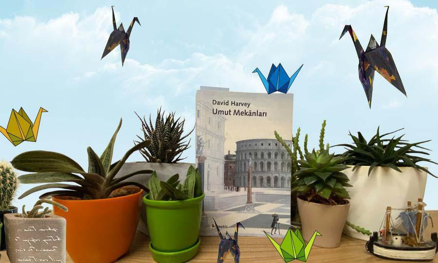 Kaktüslerin arasında turnaların kanatları altında kitaplarla umut vazeden köşe